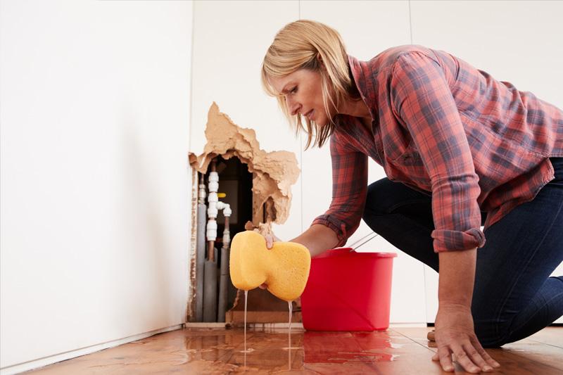 drain cleaners, drain cleaning, main line, plumbers near me, plumbers, plumber, plumber minneapolis, plumbers minneapolis, rooter, roto rooter, sewer and drain cleaning minneapolis, sewer and drain cleaning, clogged toilet, sump pump repair, sewer repair,